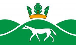 Pewsey Flag